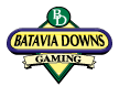 Batvia Downs Gaming Image